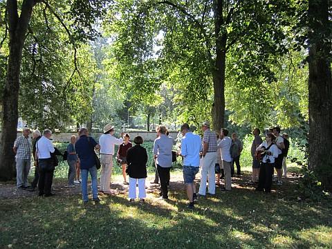 Mehrere Menschen stehen im Park bei einer Besprechung zusammen
