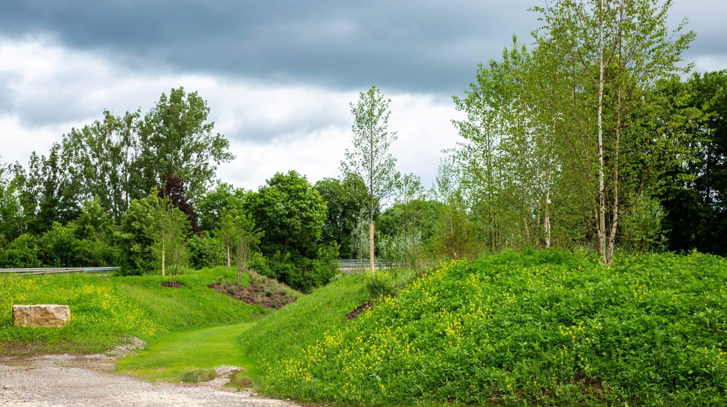 Grüne Hügellandschaft der Erlebnisauen