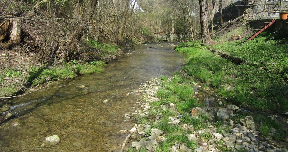 Flusslauf der Steinach